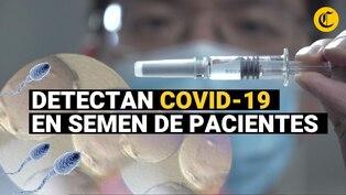 Un nuevo hallazgo: Detectan coronavirus en semen de hombres, ¿puede transmitirse por vía sexual?