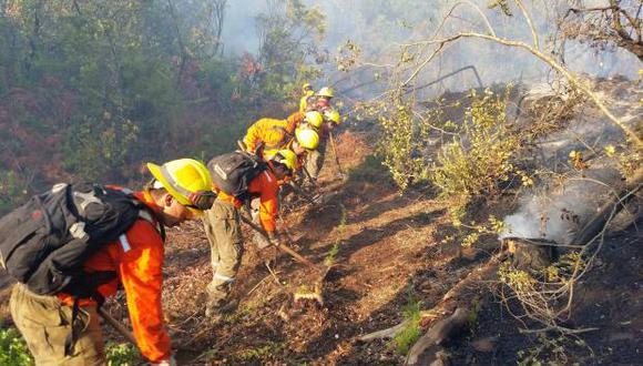 Brigadistas combaten el fuego en algunos incendios activos en la sureña región de La Araucanía. (Foto: EFE)