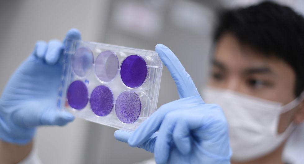 Ya existe una primera versión de la vacuna que en dos semanas estará lista para ensayos clínicos. (Foto referencial: AFP)
