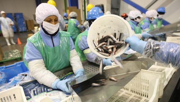 En el primer semestre de este año, las exportaciones de productos pesqueros y acuícolas tuvieron una caída de 40% respecto del mismo periodo del 2019. (FOTO: GEC)
