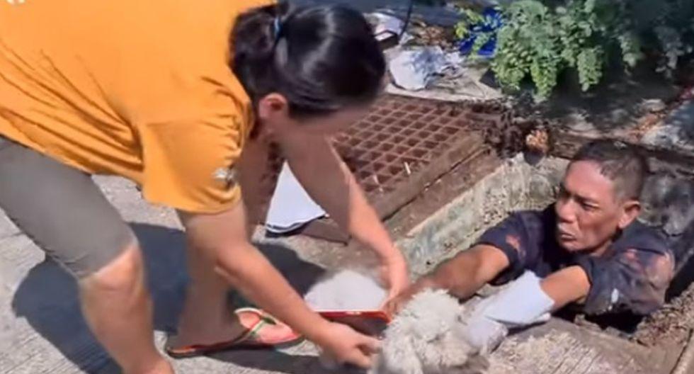 El rescatista logró salvar a la mascota, un perro raza poodle de 14 años.| Foto: YouTube/Newsflare
