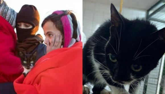 Una gatita hizo noticia por su arribo a España procedente de Marruecos en una pequeña embarcación junto a su dueña, una pequeña que no quería soltarlo por nada del mundo. | Crédito: Zoo Castellar Frontera / Facebook.