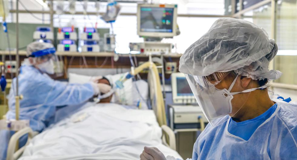 Coronavirus en Brasil | Últimas noticias | Último minuto: reporte de infectados y muertos hoy, martes 08 de diciembre del 2020 | Covid-19 | Foto: Silvio AVILA / AFP