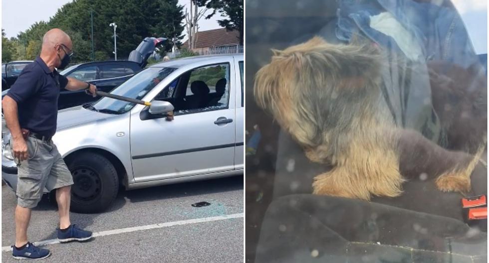FOTO 1 DE 3 | La grabación difundida en Facebook demuestra que el sujeto tomó un hacha y rompió una de las ventanas del coche para poner a salvo al can de raza Yorkshire Terrier. | Foto: Samantha Heaver / Facebook (Desliza a la izquierda para ver más fotos)
