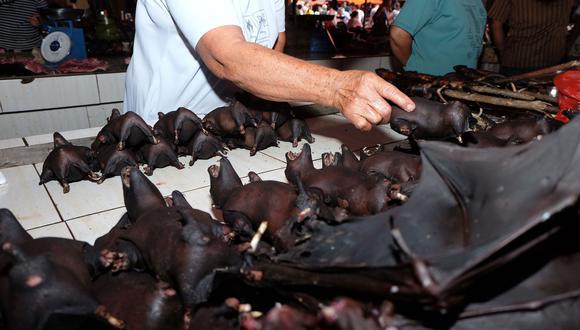 China prohíbe la venta de animales salvajes por el coronavirus. (Photo by Ronny Adolof Buol / AFP).
