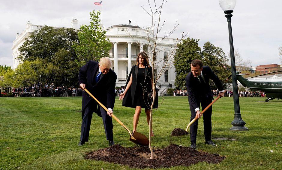 Desapareció el árbol que Emmanuel Macron y Donald Trump plantaron juntos en la Casa Blanca. (Reuters).