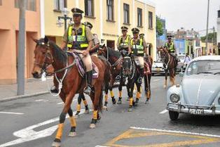 Corte Superior de Justicia de Lima prohíbe que caballos de la PNP participen de manifestaciones