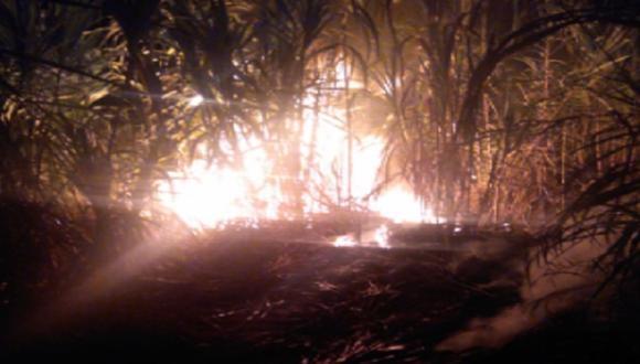 Incendio se reportó al promediar las 8:30 p.m. del último domingo en el sector de Poyor. (Andina)