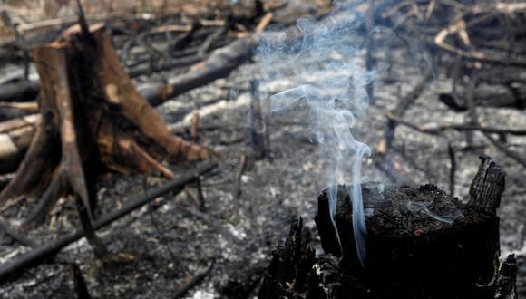 Se quema un tramo de la selva amazónica mientras los taladores y agricultores lo están limpiando en Novo Airao, estado de Amazonas, Brasil, 21 de agosto de 2019. (Foto: REUTERS).