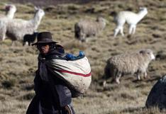 ¿Cómo retomamos la reducción de la pobreza?, por Oswaldo Molina*