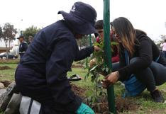 Municipalidad de San Borja promueve entre vecinos la campaña 'Adopta un árbol'