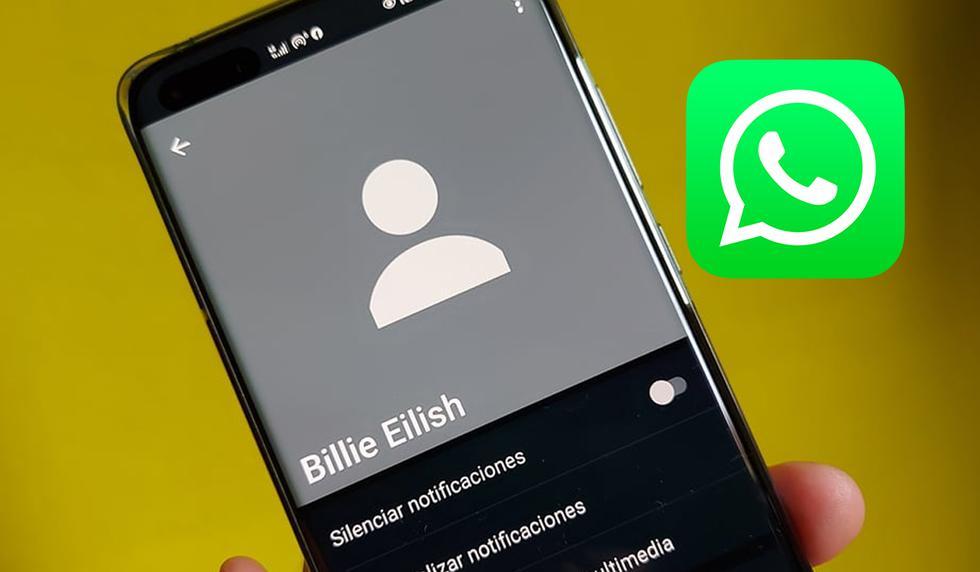 FOTO 1 DE 3 | ¿Quieres saber cómo volver a ver la foto de perfil de una persona que te bloqueó en WhatsApp? Sigue este truco.| Foto: WhatsApp (Desliza a la izquierda para ver más fotos)