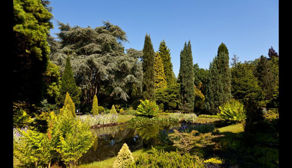 4. Arboretum Trompenburg     Foto: Shutterstock.