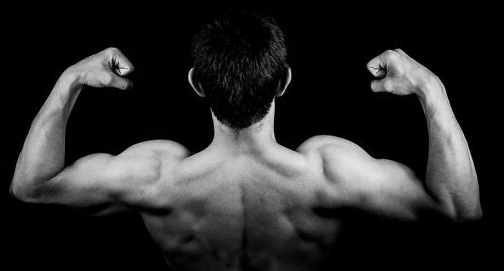 El músculo nació de un estudio que se basa en el uso células madre pluripotenciales inducidas (iPS). (Foto: Pezibear en pixabay.com / Bajo licencia Creative Commons)