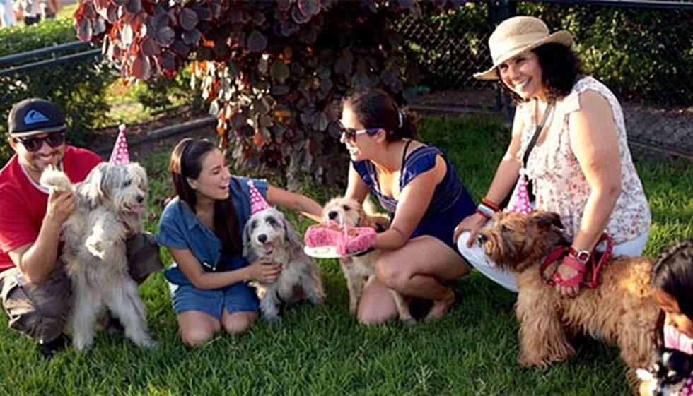 Peppa, Lara y Alma no pierden oportunidad para festejar juntas su buena vida. (Foto: Cortesía)
