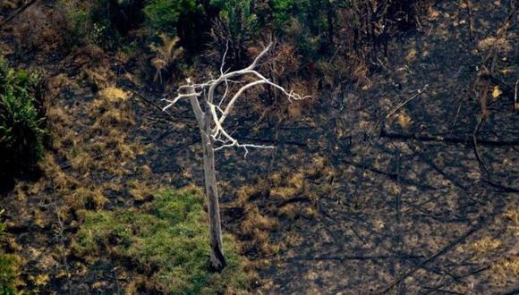 El humo y las llamas han cubierto centenares de miles de hectáreas de selva tropical. (Foto: GETTY IMAGES, vía BBC Mundo).