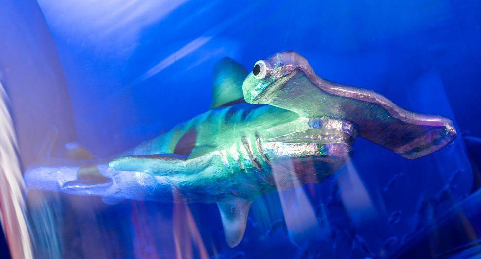 El objetivo de este acuario es generar conciencia en la población sobre el cuidado del medio ambiente y la contaminación en los mares.