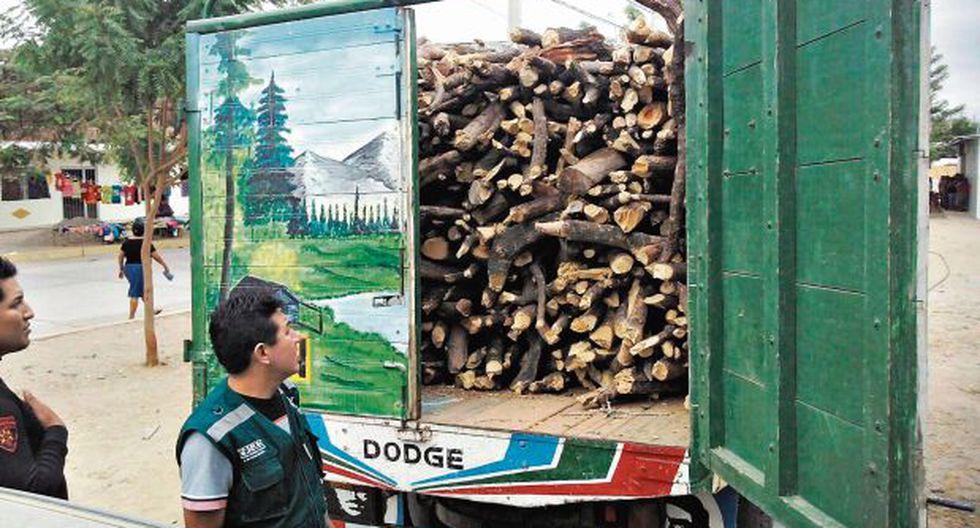 Tala ilegal depreda miles de hectáreas de bosque seco del norte