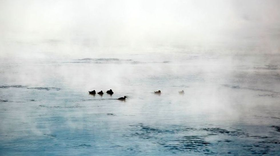 Lagunas, canales, lagos o cualquier otra forma de agua estancada expulsan un olor desagradable. (AFP)