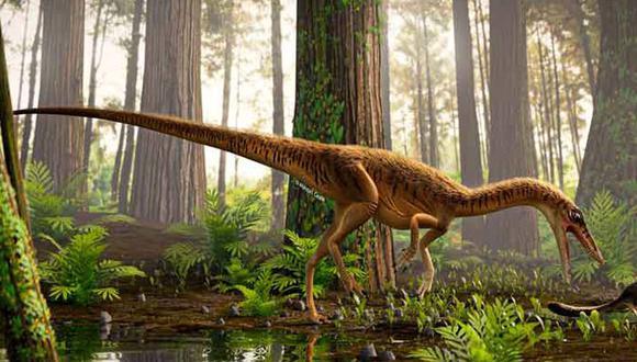 Representación del Erythrovenator jacuiensis. (Universidad Federal de Santa María)