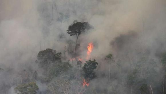 Los incendios están destruyendo los bosques pre-amazónicos.