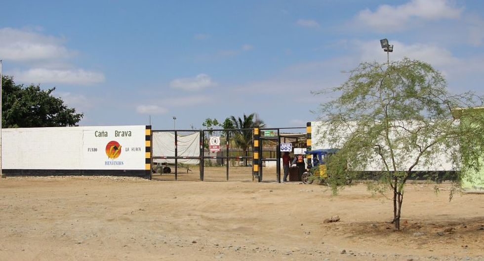 Piura: multan a Agrícola del Chira por infracción ambiental - 1