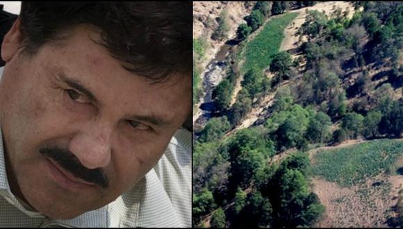 'El Chapo' Guzmán se escondió en 'Triángulo Dorado' de Sinaloa