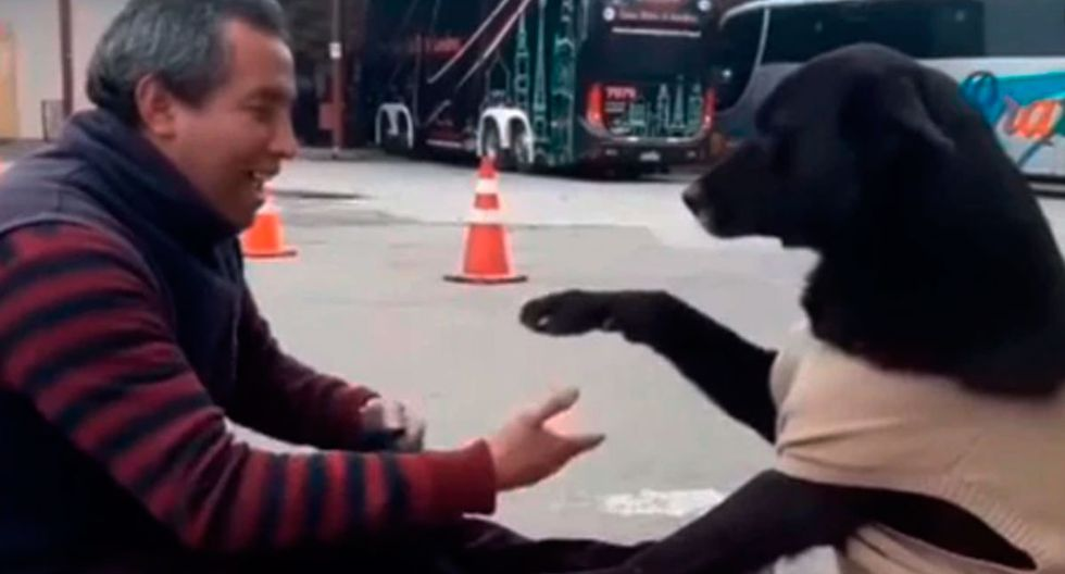 El video de un perro pidiendo a un lustrador de zapatos que limpie sus patas ha causado furor en Internet. Mira el video Youtube. (Captura)