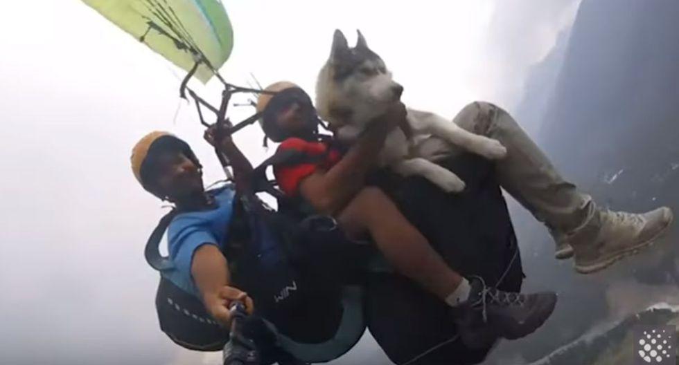 El video de un perro siberiano que vuela en parapente junto a su amo y un instructor se ha convertido en viral en YouTube | Foto: Captura de video / Newsflare