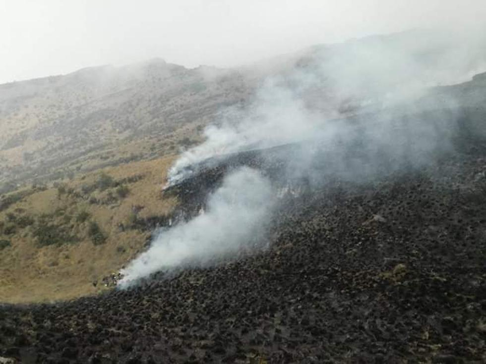 Apurímac: incendio forestal se registra en Santuario Nacional de Ampay. (Foto: Carlos Peña)