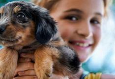 WUF: Sí, adoptar un perro es positivo si tienes niños en casa