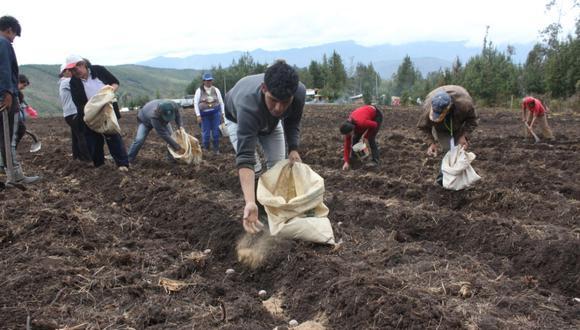 Solo en el mes de octubre, el sector agropecuario registró un crecimiento de 2,4%. (Foto: GEC)