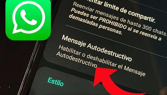 De esta manera podrás activar los mensajes que se autodestruyen en WhatsApp Plus. (Foto: MAG)