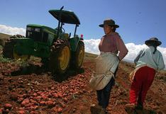 FAE Agro: Créditos saldrán a subasta con 70% de la campaña agrícola avanzada