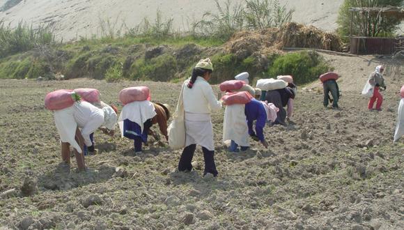 Fabiola Muñoz recalcó que la norma permitirá a los pequeños productores agrarios a juntarse y asociarse para fines de comercialización y así acceder a los beneficios de la ley. (Foto: GEC)