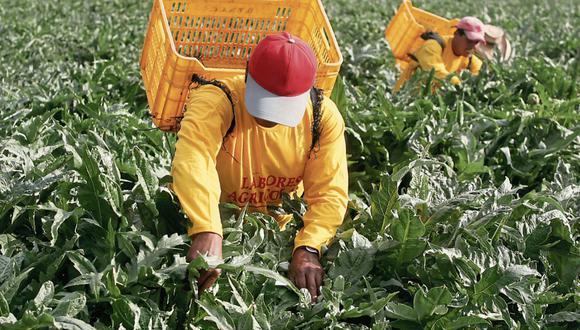 El programa busca reactivar la producción agropecuaria para la campaña de agosto próximo. (Foto: GEC)