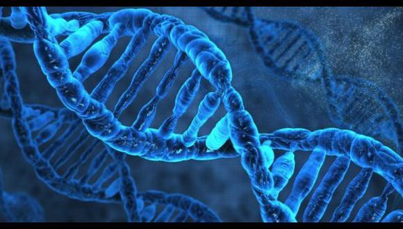 Edición del ADN sería la clave para curar la anemia falciforme