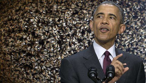 La Casa Blanca le declara la guerra a la escasez de abejas