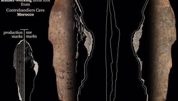 Una herramienta de hueso de la cueva de Contrebandiers, Marruecos, que se utilizó para trabajar el cuero hace 120.000 a 90.000 años.  (JACOPO NICCOLÒ CERASONI)