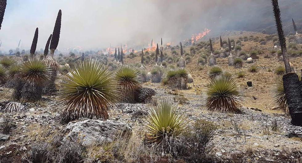 Incendios forestales en la Amazonía y en Áncash afectarán nevados. (Foto: Cortesía COER)