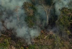 Estudio: la Amazonía de Brasil ahora emite más carbono del que puede capturar