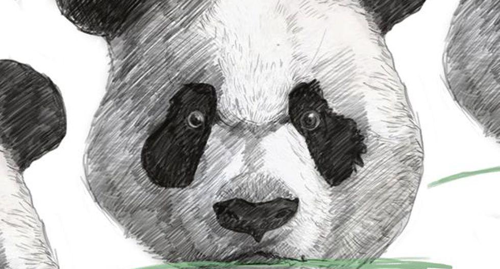Los pandas están de regreso, por Bjorn Lomborg
