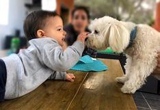 WUF: Pautas que ayudan a prevenir que los niños desarrollen miedo a los perros