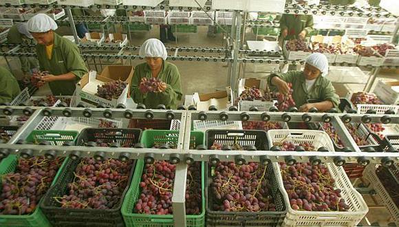 El negocio de las uvas se encuentra en crecimiento. (Foto: GEC)