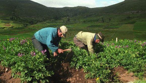 El agro crecería a 4% este año. (Foto: Difusión)