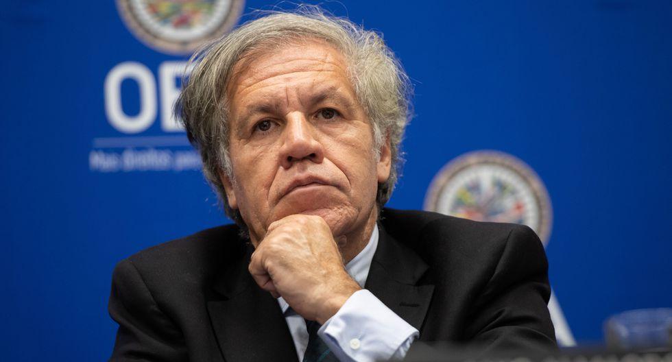Luis Almagro, secretario general de la OEA (SAUL LOEB / AFP).