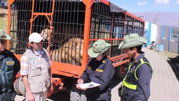 El Perú ya es libre de animales salvajes en circos, según ADI
