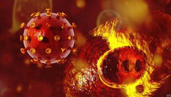 Descubren que el VIH usa células inmunitarias para propagarse