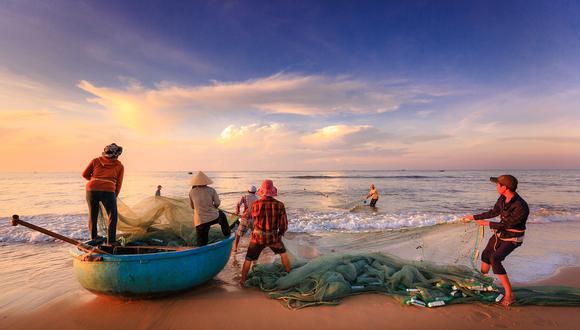 Pescadores se llevan tremendo susto cuando peligrosa criatura emerge del agua y los ataca. (Foto: Pixabay / referencial)