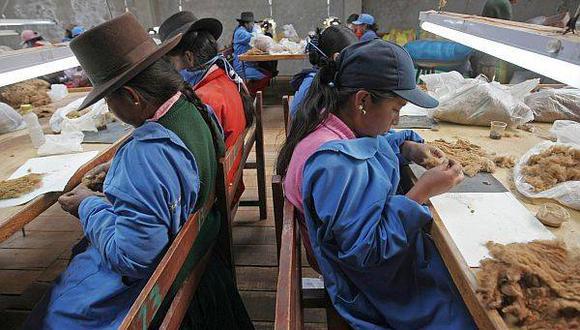 """""""En el 2014, Perú se comprometió a hacerle frente a la desigualdad de género"""", recuerdan las expertas."""
